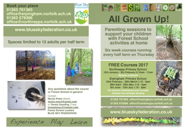 thumbnail of Forest School All grown up leaflet Jan 2017