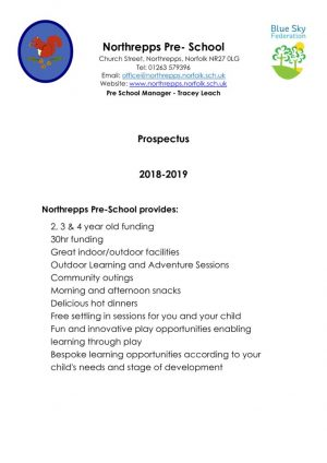thumbnail of NPS Pre School Prospectus November 2018 vs1
